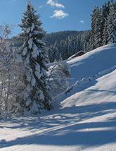 Nouvel an</br>Tyrol
