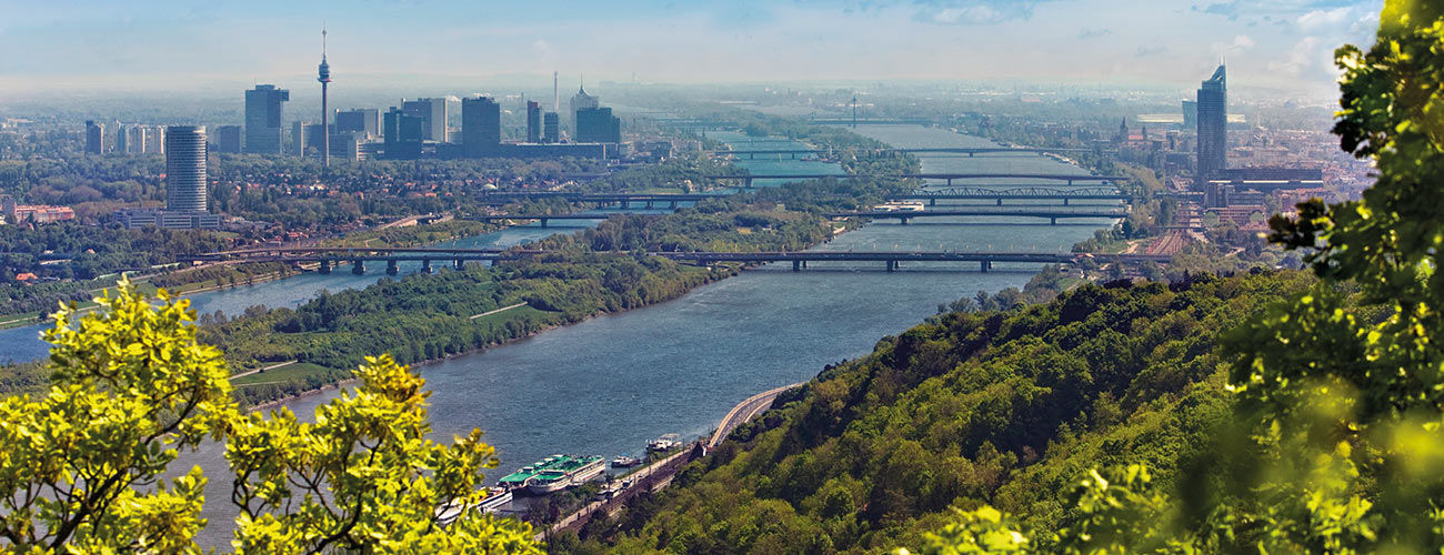 Superbe vue sur le Danube et Vienne