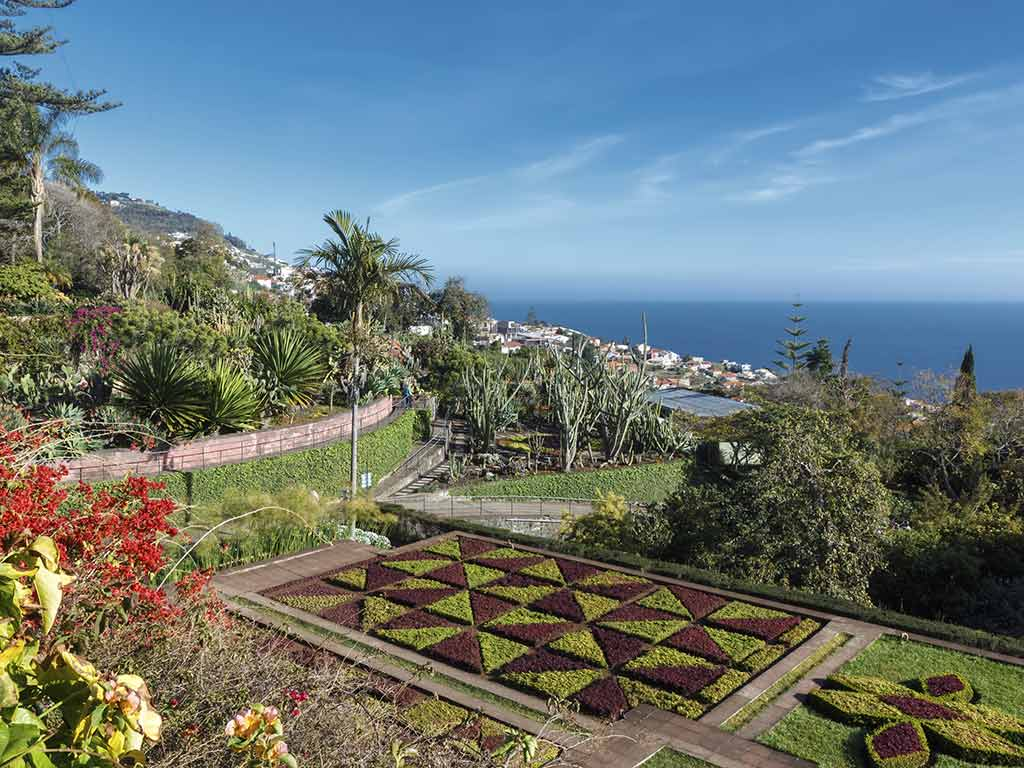 En option, visite des jardins botaniques